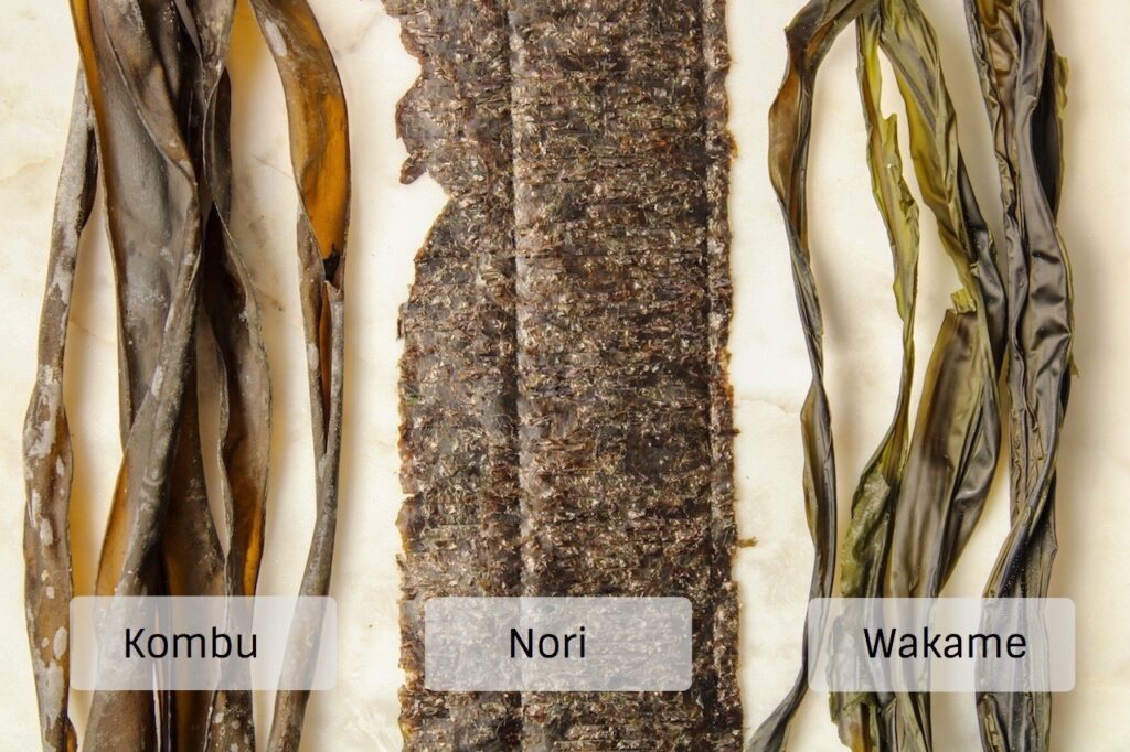 There 3 different types of seaweed (Kombu, Nori and Wakame) placed on a white table to compare their appearence.